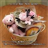 LittleBearHerbGarden(全5種)お花&リトルベアと焼き菓子のハーブティーセット (pink)