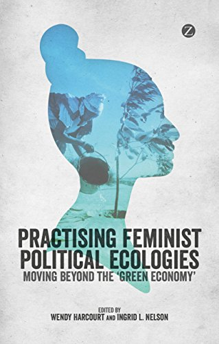 practising-feminist-political-ecologies-moving-beyond-the-green-economy