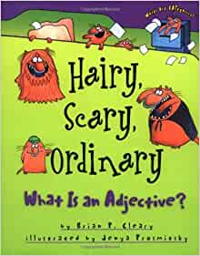 hairy scary ordinary what is an adjective pdf