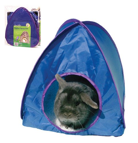 BOREDOM BREAKERS Pop-up Tent (Large) (assorted colours)