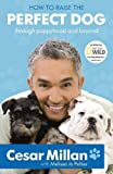 Cover of How to Raise the Perfect Dog by Cesar Millan Melissa Jo Peltier 0340993073