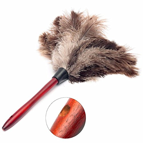 20cm Ostrich Feather Home Cleaning Duster Brush Wood Handle Anti-static Natural Grey Fur (Ceiling Fan Duster 6 Ft Pole compare prices)
