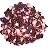 1 pint of Freeze Dried Burgundy and Cream Rose Petals from InterPetal the Petal Experts