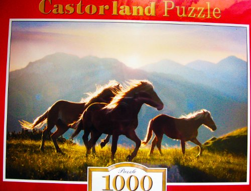 Castorland 1000 Piece Puzzle - Watermill