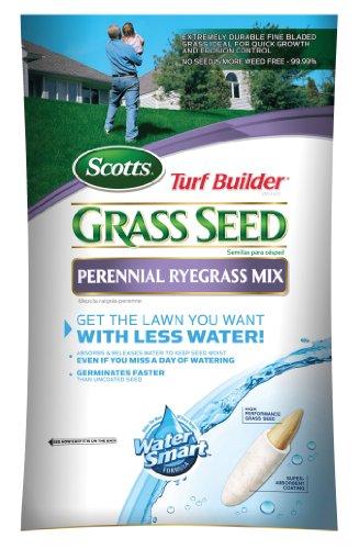 Scotts 18163 Turf Builder Perennial Rye Grass Seed 7-Pound Bag