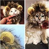 Katzen Spielzeug Kleidung Kostüm Löwenmähne Hut Cosplay Löwe Mähne Haar