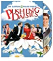 Pushing Daisies: Complete Second Season [DVD] [2009] [Region 1] [US Import] [NTSC]