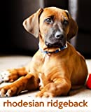 TodaysPetPublishing Rhodesian Ridgeback: A Gift Journal for People who Love Dogs: Rhodesian Ridgeback Puppy Edition: 18 (So Cute Puppies)