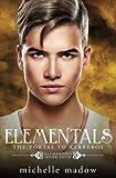 Elementals 4: The Portal to Kerberos (Volume 4)