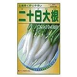 カネコ種苗 園芸・種 KS100シリーズ 二十日大根 ホワイトミニ 野菜100 520