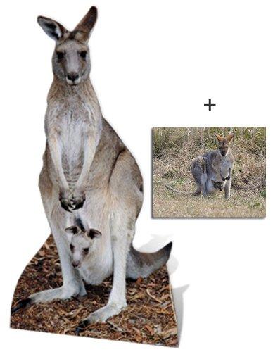 Kangaroo Cardboard Cutout