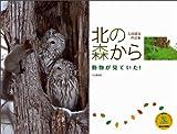 カレンダー2012 動物が見ていた! 北の森から (Yama-Kei Calendar2012)