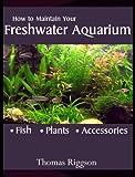 How to Maintain Your Freshwater Aquarium