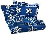 Pinzon Lightweight Cotton Flannel Duvet Set - Full/Queen, Snowflake Cadet Blue