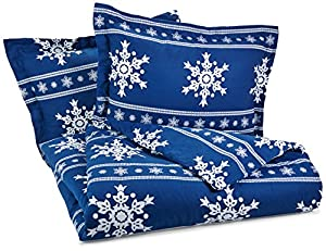 Pinzon Lightweight Cotton Flannel Duvet Set - Full/Queen, Snowflake Cadet Blue