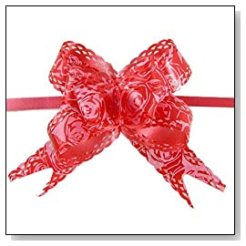 Amico Rose Print Christmas Red Pull Bow Ribbon 10 Pcs
