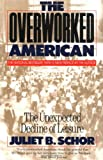 Overworked American: The Unexpected Decline of Leisure (046505434X) by Schor, Juliet B.