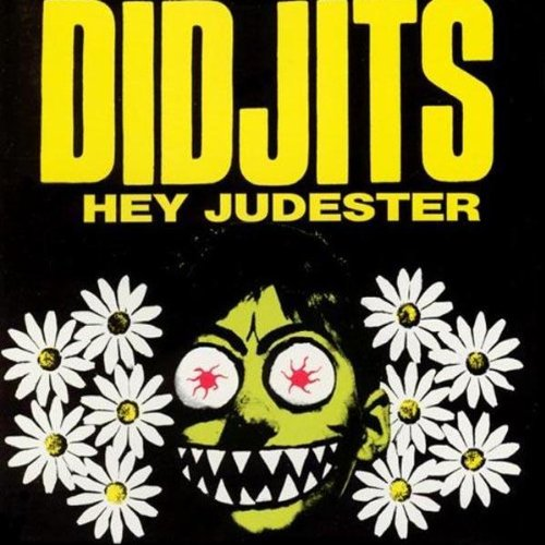 Amazon.com: DIDJITS: Hey Judester: Music