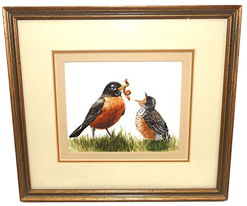Vintage Signed Frances Burkett Watercolor Painting of Mother Robin Feeding Baby Bird