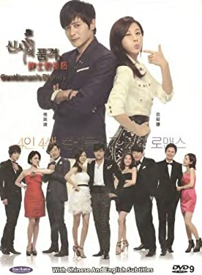 Gentleman's Dignity (Korean drama, English subtitles, NTSC All region)