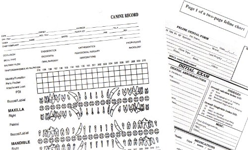 AVDC Canine and Feline Dental Record Charts