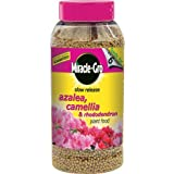 Miracle-Gro 1 kg Slow Release Azalea, Camellia and Rhododendron Plant Food Shaker Jar