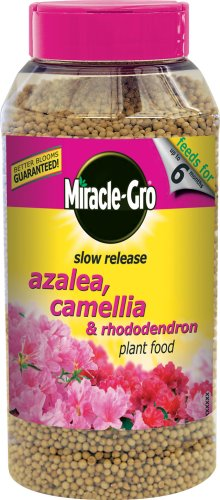 scotts-miracle-gro-azalea-camellia-and-rhododendron-continuous-release-plant-food-shaker-jar-1-kg