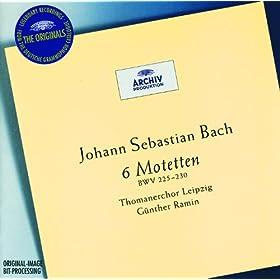 Bach: 6 Motets BWV 225-230