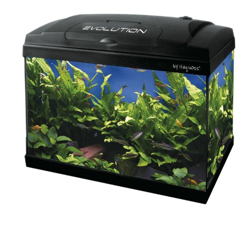 acquario-evolution-40-eco-version-40x25x28h-lt23-con-filtro-riscaldatore-e-led