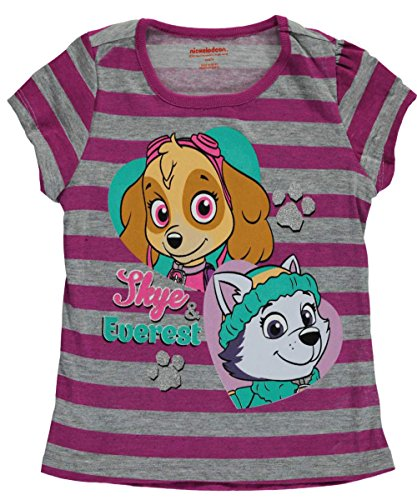 "Paw Patrol Little Girls' ""Skye & Everest"" T-Shirt"