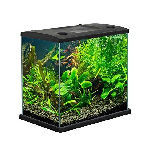 acquario-cleo-in-vetro-colore-nero-per-pesci-rossi-completo-22-lt