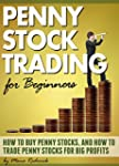 Penny Stock Trading for Beginners: Ho...