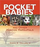 img - for Pocket Babies: And Other Amazing Marsupials (Junior Library Guild Selection) book / textbook / text book
