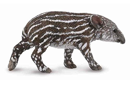CollectA Baird's Tapir Calf Figure - 1