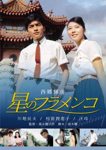 星のフラメンコ [DVD]