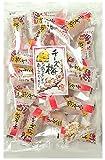 井崎商店 チーズ梅 55g×15袋