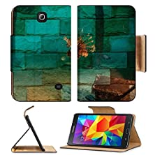 buy Samsung Galaxy Tab 4 7.0 Inch Flip Pu Leather Wallet Case Lionfish Sipadan Malaysia Mural The Stone Painting Concept Image 34503585 By Msd Customized Premium