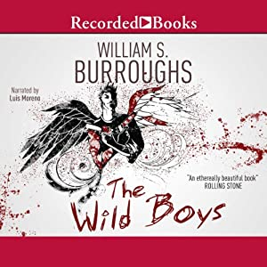 Wild Boys Audiobook