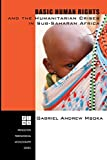 Basic Human Rights and the Humanitarian Crises in Sub-Saharan Africa: Ethical Reflections (Princeton Theological Monograph)