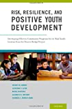img - for Risk, Resilience, and Positive Youth Development: Developing Effective Community Programs for At-Risk Youth: Lessons from the Denver Bridge Project book / textbook / text book