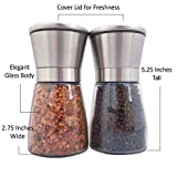 Cuisineye Salt and Pepper Grinder Set with 5 Settings Stainless Steel Handles Clear Glass Body Burr Grinder