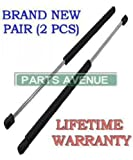 2 Pieces (SET) Hatch Lift Supports Chevrolet Citation / Chevrolet Monza / Buick Skyhawk / Oldsmobile Starfire / Chevrolet Chevette / Pontiac Phoenix W/O Defroster / Pontiac Sunbird / Pontiac T1000