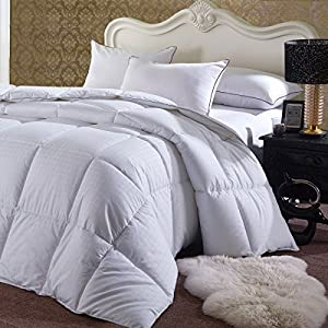 Royal Hotel's Overfilled Dobby Down Alternative Comforter, California-King Size, Checkered White, 100% Egyptian Cotton Shell 300 TC - 100 OZ Fill -750+FP