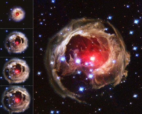 Hubble Space Telescope Photo Red Supergiant Star Nasa Photos 8X10