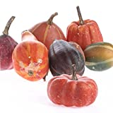 Factory Direct Craft 10 Piece Collection of Warm Colored Styrofoam Pumpkins and Gourds for Home and Holiday Decor