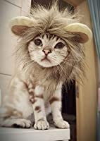 QUMY Cat Costume Lion Mane Wig Small Dog Cat Costume Dress up with Ears