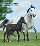 Horse Lovers 2013 Hardcover Weekly Engagement