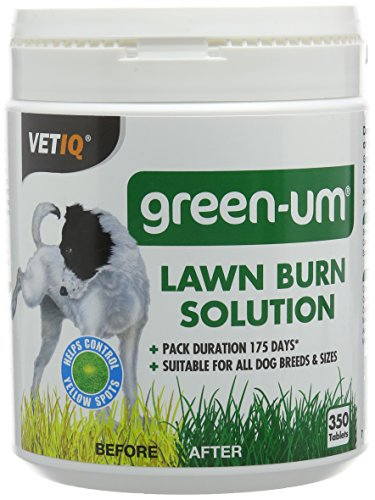 vetiq-green-um-350-tabs-lawn-burn-solution-prevents-yellow-patches-on-the-lawn