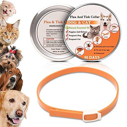 wolfwill-collier-antiparasitaire-anti-puce-et-tique-avec-essentiel-naturel-pour-chien-chat-avec-une-