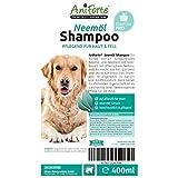 AniForte pflanzliches Neemöl Shampoo 400 ml Hundeshampoo parfümfrei - Naturprodukt für Hunde -